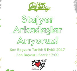 Stajyer Duyuru
